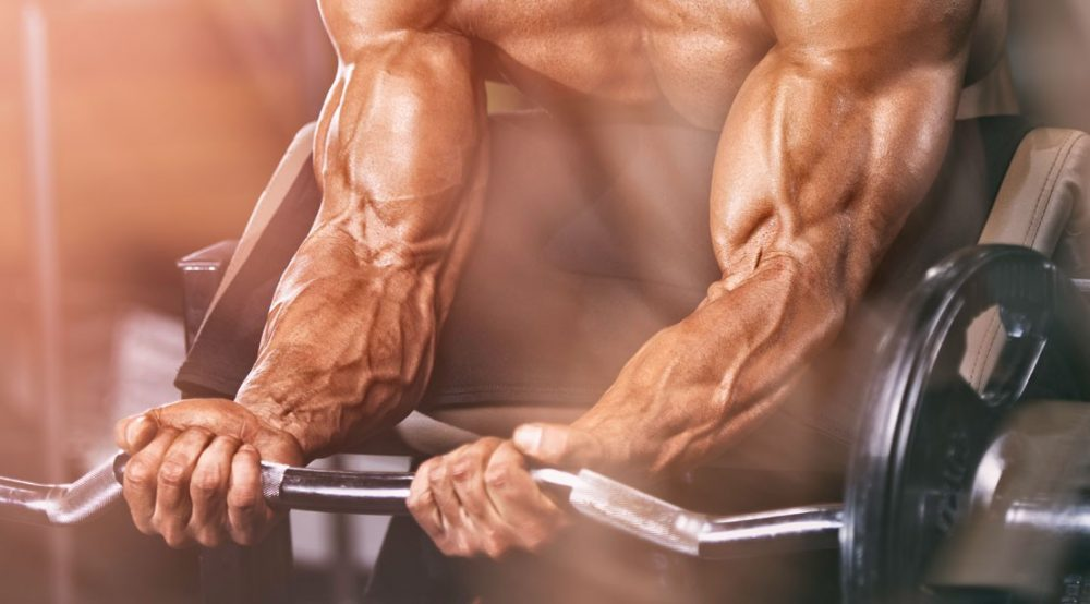 Best Legal Steroids | REVIEW 2021 | Muscle Mass & Ripping